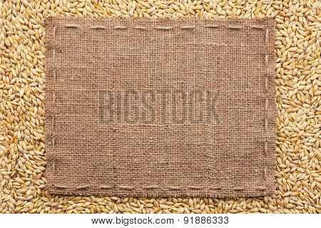 Classical Frame On Barley Grain