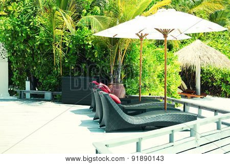 Sunbeds in resort over green palms background