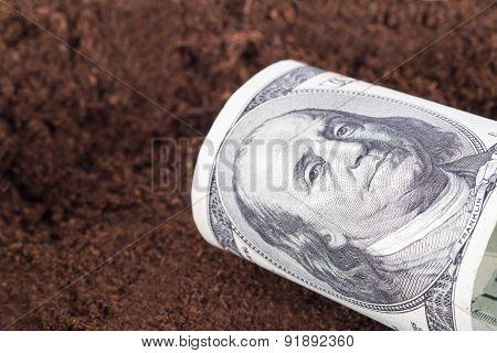 Dollar Banknote On Soil