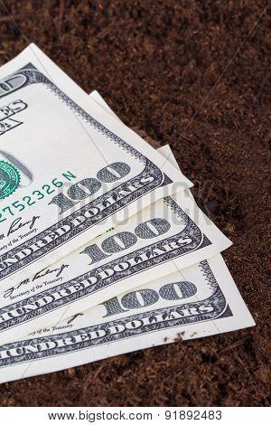 Dollar Banknotes On Soil