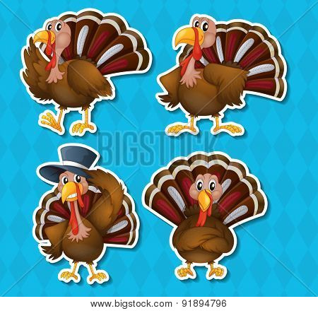Four happy turkey in different positions