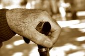 image of memory stick  - closeup of the hand of an old caucasian man with a walking stick - JPG