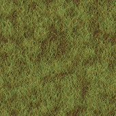 image of dry grass  - Grass dry generated seamless texture or background - JPG
