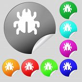 image of disinfection  - Software Bug Virus Disinfection beetle icon sign - JPG
