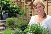 foto of fifties  - Smiling fifty year old lady gardener outside in the garden holding a pack of lobelia - JPG