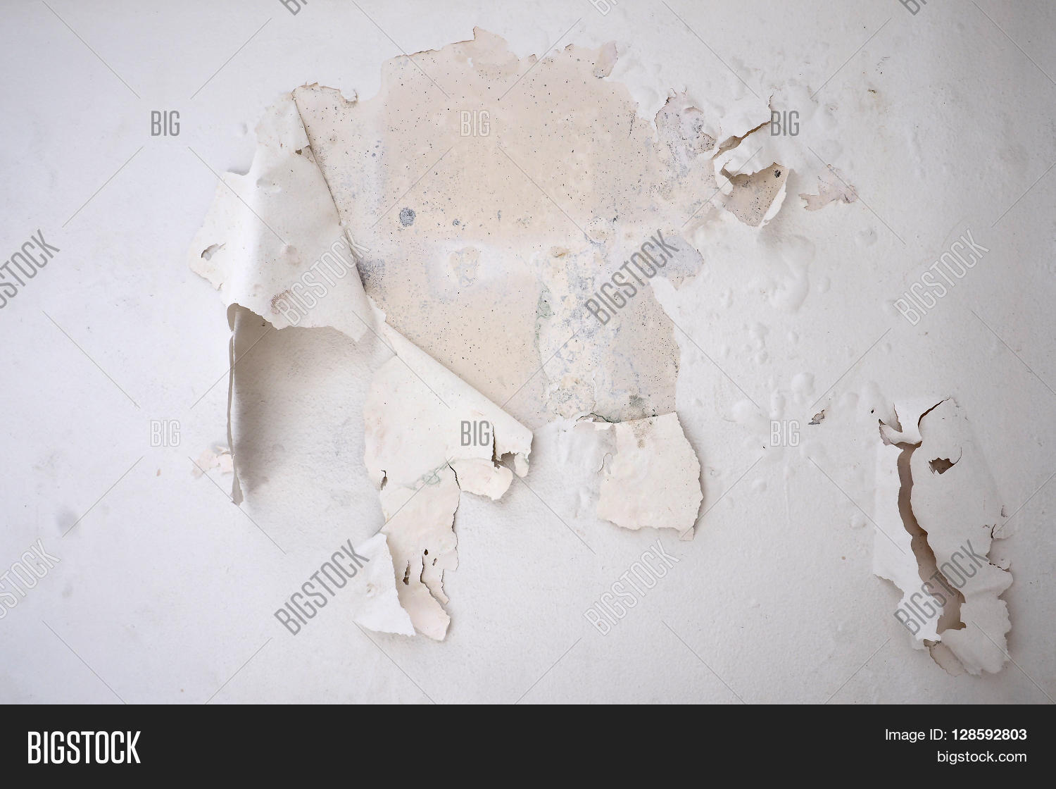 I Had To Peeling Paint My House Wall By My Self Because Moisture From The Side Walls The Color