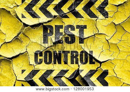 Grunge cracked Pest control background