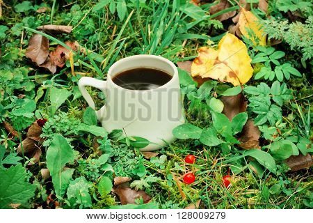 Morning coffee in green area with leaves grass and forest background