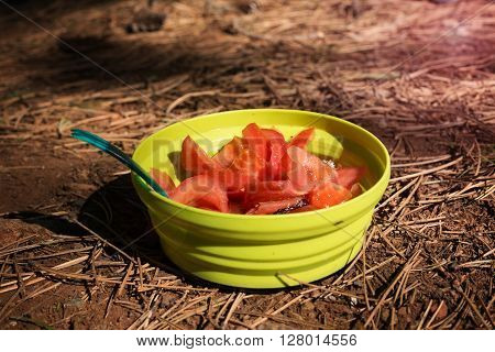Cooking food on outdoor. Small dish with salad on the earth with pine needles. Blurred background.