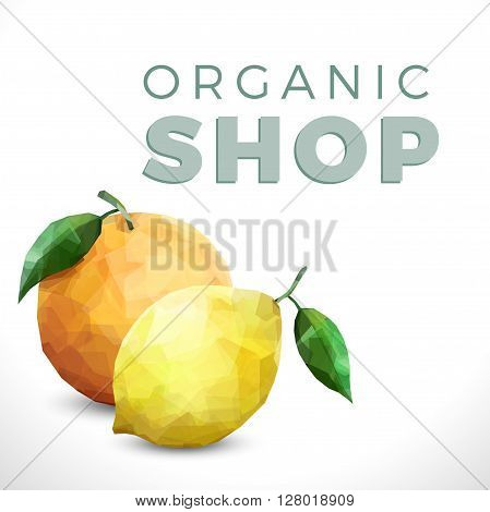 Organic shop background with Creative text and two fresh fruits on white background. Two citrus lemon and orange isolated with vintage text.