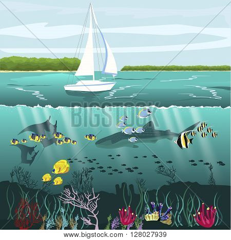 Over-under split view of the yacht and underwater scenery with marine life