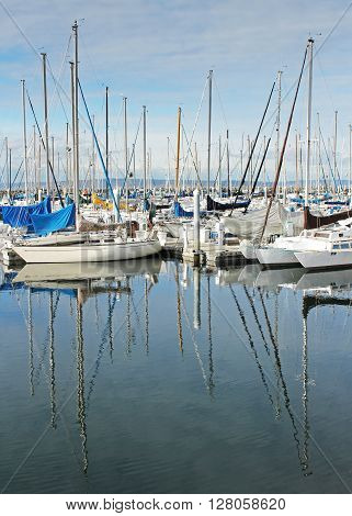 Sailboats sit in harbor with their masts reflected in the water.