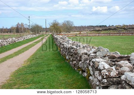 Springtime at a landscape with an old country road surrounded of stone walls