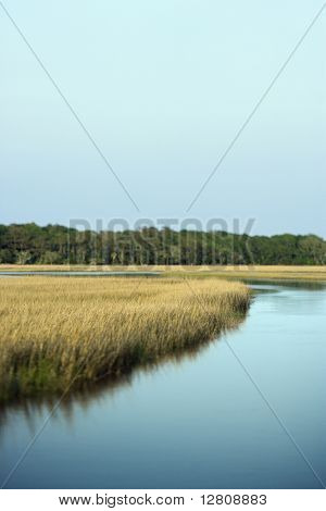 Scenic marsh landscape on Bald Head Island, North Carolina.