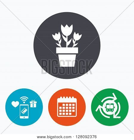 Flowers in pot icon. Bouquet of roses. Macro sign. Mobile payments, calendar and wifi icons. Bus shuttle.