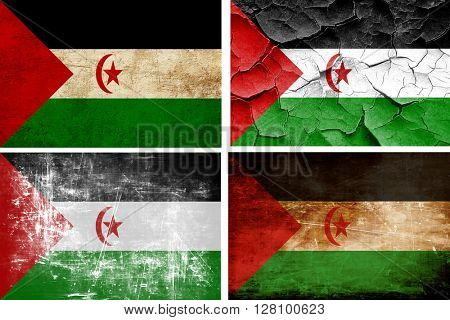 Western sahara flag collection. 4 different flags on white backg