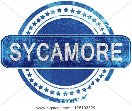 sycamore grunge blue stamp. Isolated on white.