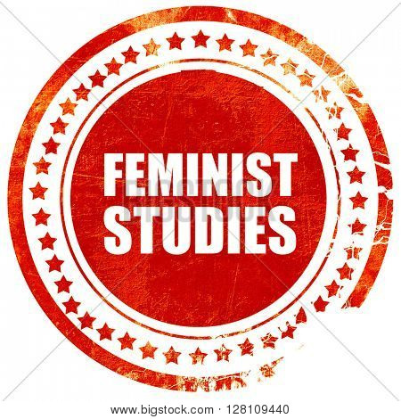 feminist studies, red grunge stamp on solid background