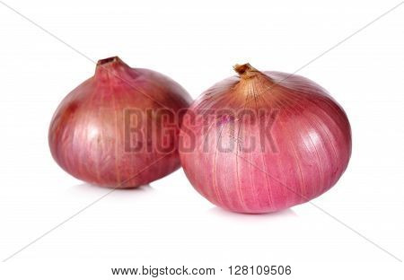 unpeeled whole red onion shallots on white background