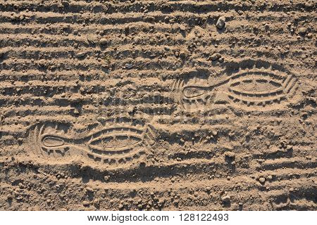 Footprints on brown, grooved, loosened soil. Landscape.