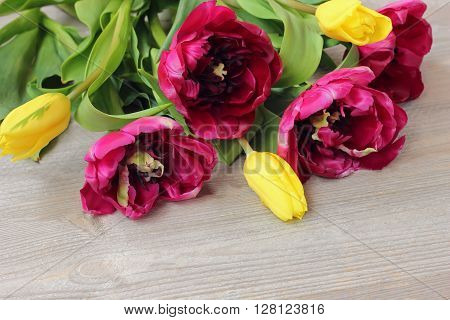 Bouquet of yellow and Burgundy tulips on a wooden platform top view.