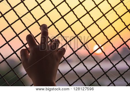 Woman's hand grabs the fence, concept of imprisonment, social issue violence, and prostitution issue