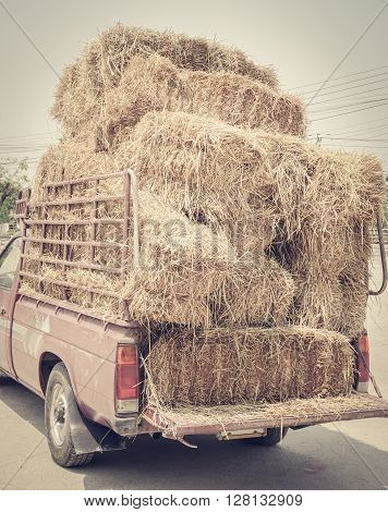 Dried yellow hay or haystack on old truck colored filter effect