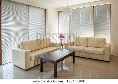 modern living room. Home interior. Table and coaches
