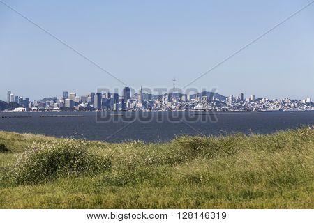 Morning meadow view across San Francisco Bay.