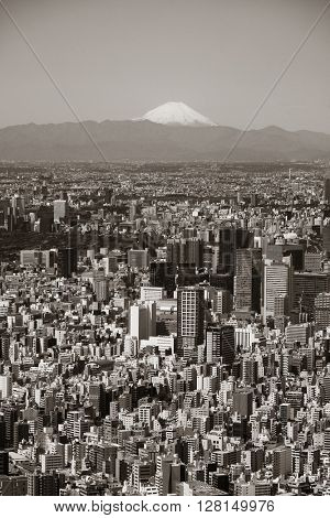 Tokyo urban skyline rooftop view with Mt Fuji, Japan.