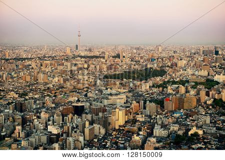 Tokyo Skytree and urban skyline rooftop view at sunset, Japan.