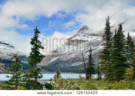 Bow Lake with snow capped mountain and forest in Banff National Park