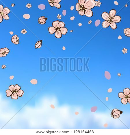 Typographic Design.  Spring design on blurred background with cherry blossom or sakura.