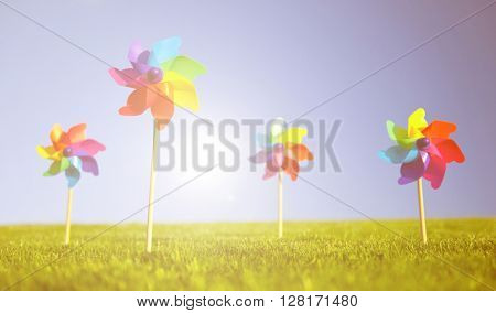 Group Pinwheels Grass