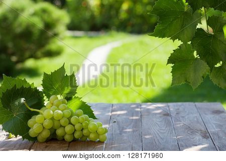 White grapes on garden table. View with copy space