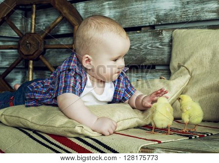 baby playing with two chicken in the farm house