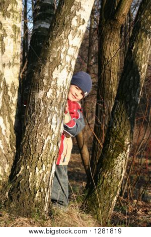 Child In Spring Wood