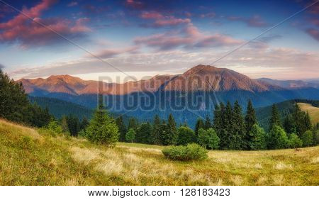 Fantastic view of the magic range glowing by sunlight. Dramatic picture and picturesque scene. Location place Carpathian national park, Ukraine, Europe. Beauty world. Warm toning effect. Soft filter.
