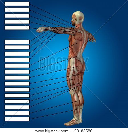 3D illustration of a concept or conceptual male or human anatomy, a man with muscles and textbox on blue gradient background