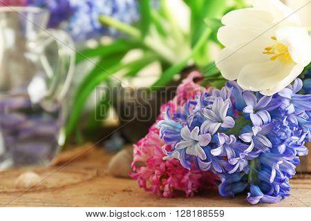 Hyacinth and tulip, closeup