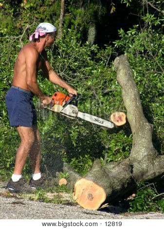 Chainsaw Operator