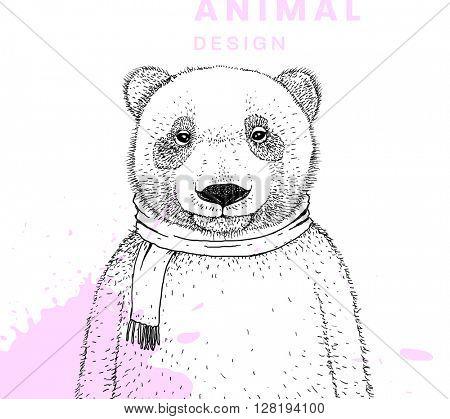 Hand Drawn Bear. Vector Graphic Illustration.
