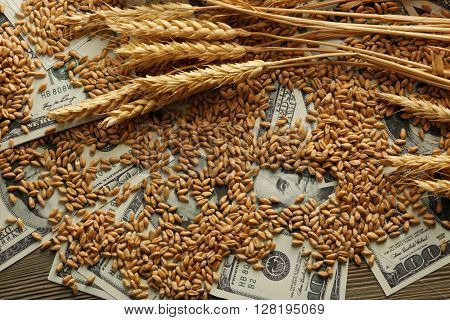 Dollar banknotes and wheat grains. Agricultural income concept