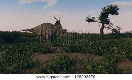 3d illustration of grazing achelousaurus