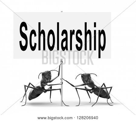 Scholarship or grant for university or college education study funding application for school funds.