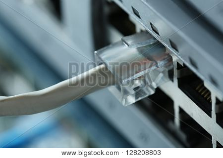 Ethernet cable connected to network switch, close up