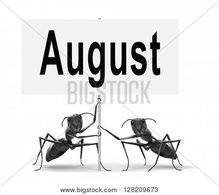 august warm summer vacation month event calendar or timetable schedule, road sign billboard.