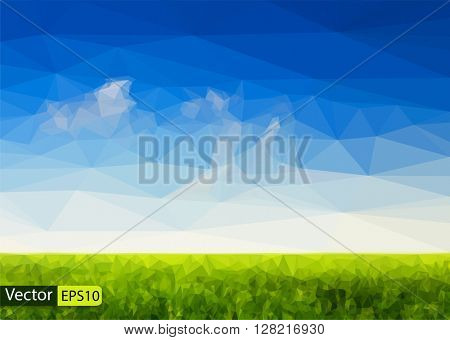 Vector low poly beautiful sky and green grass field