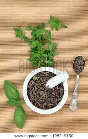 Fresh basil herb varieties with dried tusli holy basil in a mortar with pestle and silver spoon used in natural herbal medicine over bamboo background.