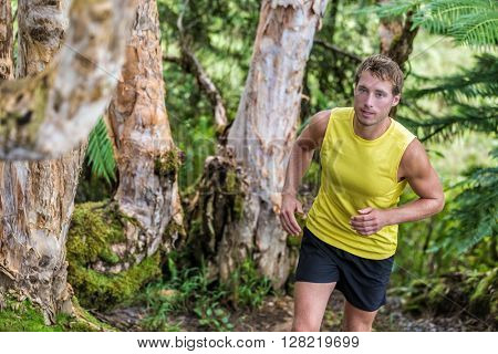 Trail running man athlete runner in forest nature path jogging along trees in summer landscape. Male sports fitness fit guy training hard exercising sweating living a healthy and active life.